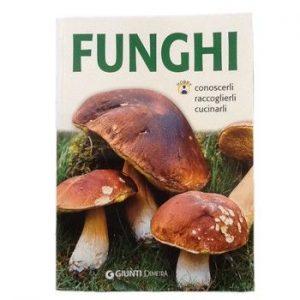 Funghi Conoscerli Raccoglierli Cucinarli