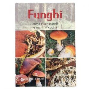 Funghi Come Riconoscerli E Usarli In Cucina