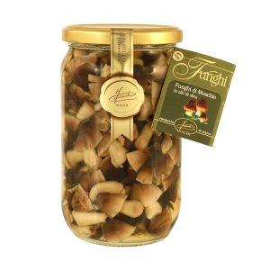 Funghi di muschio in olio di oliva 670g