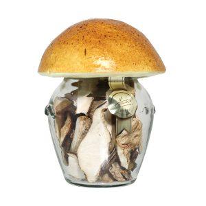 Funghi secchi mix quattro sapori vasetto 20g con tappo fungo