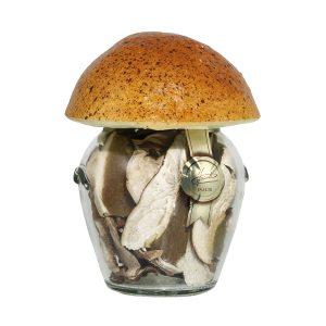 Porcini secchi speciali vaso fungo 20g