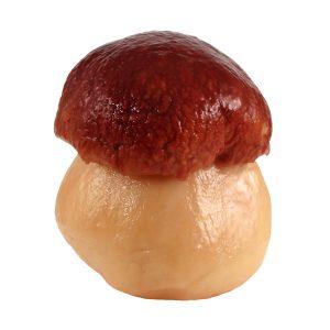 """Funghi porcini interi testa rossa calibro """"medi limone"""" in concia"""